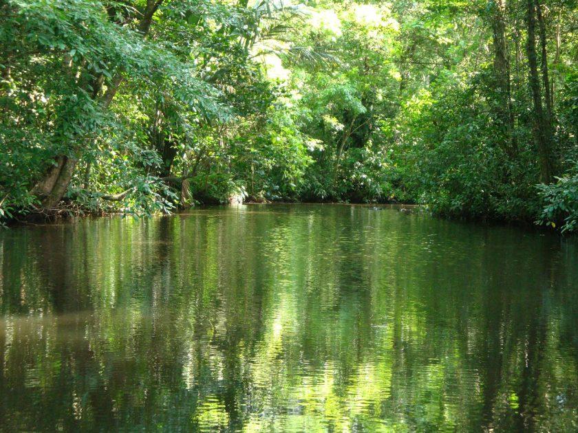 4 curiosités naturelles à découvrir au Costa Rica
