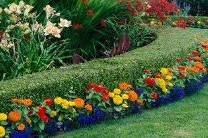 Comment garder votre jardin propre ?